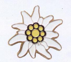 Edelweiss Pin white